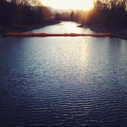 Bow River / Photo by Lori Andrews @theoriginal10cent on instagram